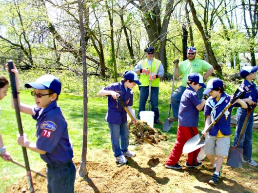arbor-day-planting-robbinsville